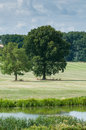 Countryside landscape in rural English countryside Royalty Free Stock Photo