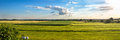Countryside panorama of green field Royalty Free Stock Photo