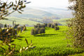 Countryside san quirico d orcia tuscany italy Stock Photos