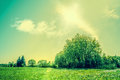 Countryside scenery with green fields and sunshine high resolution photo in best quality Royalty Free Stock Photo