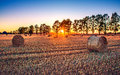 Countryside sunset Royalty Free Stock Photo