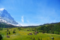 Countryside view near alps mountains in summer traditional the valley with houses and trees mountain covered with snow Royalty Free Stock Photos