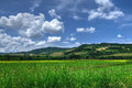 Countryside view of Tuscany, Volterra, Italy Royalty Free Stock Photo