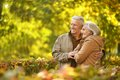 Couple in autumn park Royalty Free Stock Photo