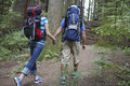 Couple with backpacks walking in forest rear view of a young holding hands and Stock Image