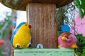 Couple of bird doll cute Stock Photo