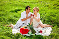 Couple celebrating at picnic together Stock Photo