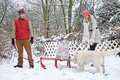 Couple with christmas gifts on sled in winter dog Stock Photos