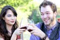 Couple clinking wine glasses a young something smile and clink their in a toast Stock Photo