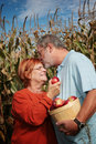 Couple in a corn field Royalty Free Stock Photo