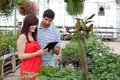 Couple with Digital Tablet in Greenhouse Royalty Free Stock Image