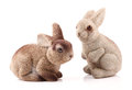 Couple of easter bunnies isolated on white background Stock Photos