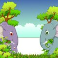 Couple elephant cartoon with forest background and blank sign Royalty Free Stock Photo