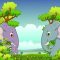 Couple elephant cartoon with forest background illustration of Stock Images