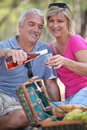 Couple enjoying a picnic Royalty Free Stock Image