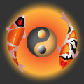 Couple fancy carp with ying yang symbol design for four elemental concept earth water wind fire Royalty Free Stock Images