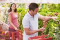 Couple flirting in supermarket aisle Stock Images