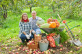 Couple with harvested vegetables happy in garden Royalty Free Stock Photos
