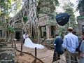 A couple have pre-wedding pictures taken in front of a banyan tree growing over temple ruins at Ta Prohm, Cambodia Royalty Free Stock Photo