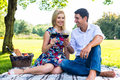 Couple having picnic wit red wine on meadow Royalty Free Stock Photo