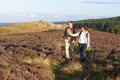 Couple hiking across moorland covered with heather pointing Royalty Free Stock Photo