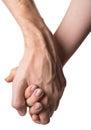 Couple holding hands. Loving couple. Royalty Free Stock Photo