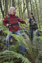 Couple holding hands and walking in forest man women with backpacks the Royalty Free Stock Photos