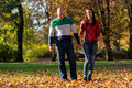 Couple holding hands and walking in the woods during color photo of a forest through outside autumn Royalty Free Stock Photo