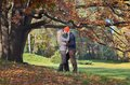 Couple kisses happy kissing in autumn forest Stock Images