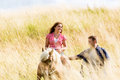 Couple leading horse thru summer meadow young Royalty Free Stock Images