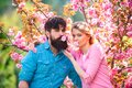 Couple in love enjoying pink cherry blossom. Man and woman in blooming garden. Portrait of young couple smiling on Royalty Free Stock Photo