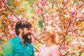 Couple in love enjoying pink cherry blossom. Spring portrait of beautiful happy couple. Couple enjoying a moment in Royalty Free Stock Photo
