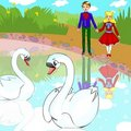 Couple in love swans Royalty Free Stock Photo