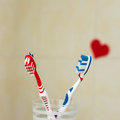 Couple in love of two toothbrushes. Suggesting St. Valentines Day concept. Selective focus. Royalty Free Stock Photo