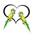 A couple of macaw parrots with a heart vector art illustration on white background Stock Photos