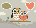 Couple owl easy cartoon illustration of a cute Royalty Free Stock Photography