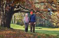 Couple in the park happy resting autumn holding hands Royalty Free Stock Photos