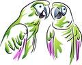 Couple parrots