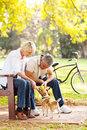 Couple pet dog happy middle aged playing with their at the park Royalty Free Stock Photos
