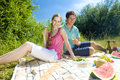 Couple at a picnic Royalty Free Stock Image