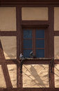Couple of pigeons sitting on window old medieval house s bavaria Stock Image