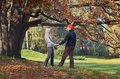 Couple relaxing in the park happy autumn holding hands Royalty Free Stock Photo