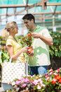 Couple shopping plants Stock Photography