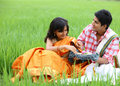 Couple sitting in the paddy field Stock Photography