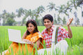 Couple sitting in the paddy field Royalty Free Stock Photos