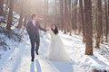 Couple on the snow road beautiful bride and groom walking a snoe in sunny day Stock Photos