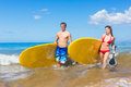 Couple with stand up paddle boards attractive sup on the beach in hawaii Royalty Free Stock Image