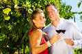 Couple standing at vineyard and drinking wine Royalty Free Stock Photos