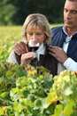 Couple tasting red wine in a wineyard Stock Image
