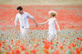 Couple walking in poppy field holding hands Royalty Free Stock Photo